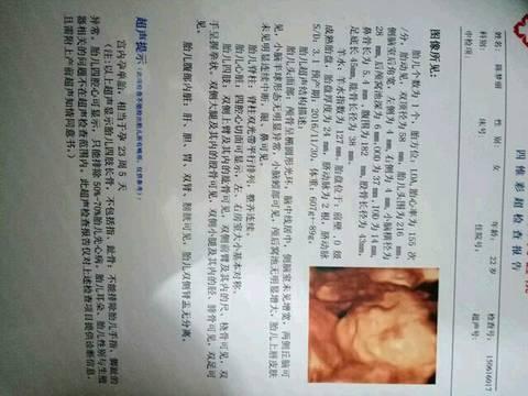 journal_insert_pic_547474876