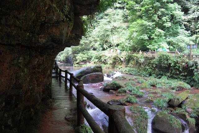 嗷嗷熊猫 日记正文  碧峰峡分为动物区和风景区,这次去的风景区,动物
