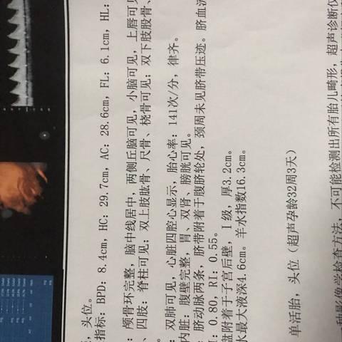 journal_insert_pic_1134038733