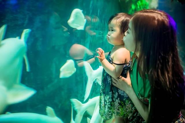 越南芽庄珍珠岛,亲子旅行必去的童话王国